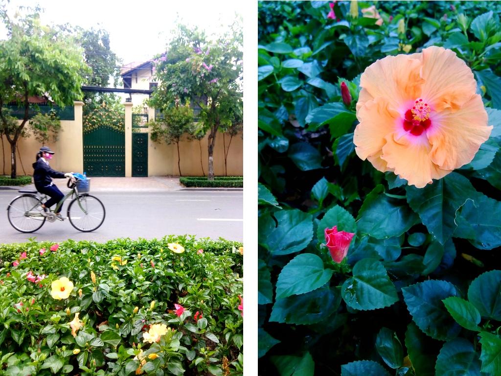 BdayVietnam-22-SaigonStreets